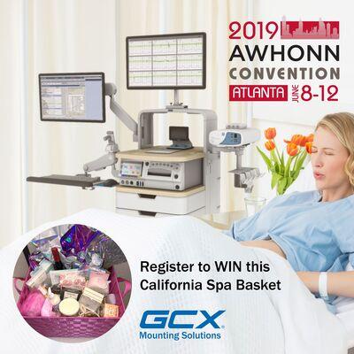 Meeting Today's L&D Nursing Needs at AHWONN 2019
