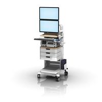 FMC GE Stack Dual Monitor L